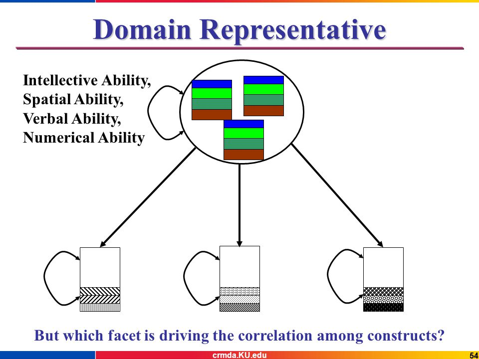 54 Domain Representative But which facet is driving the correlation among constructs.
