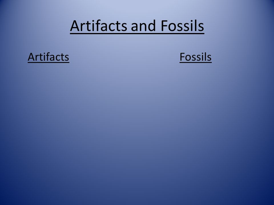 Warm-up Day 6 Look at the items below and determine if they are fossils or artifacts. Use a tree map in your notebook to organize the information. Foo