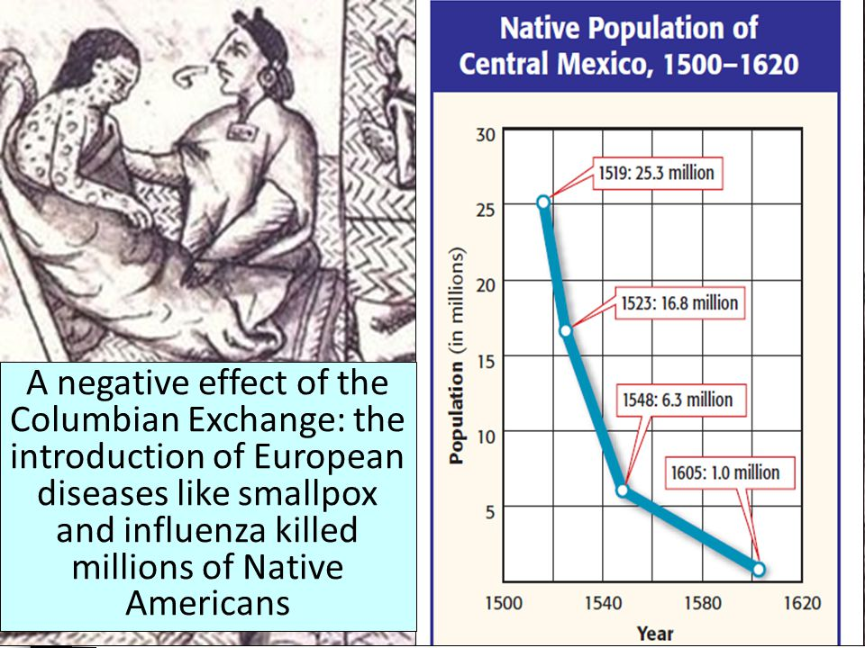 The introduction of American potatoes and corn helped improve the diets and life expectancy of people throughout the world The introduction of European grains, horses, and cattle transformed many Indian cultures