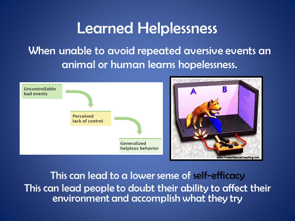 Learned Helplessness When unable to avoid repeated aversive events an animal or human learns hopelessness. This can lead to a lower sense of self-effi