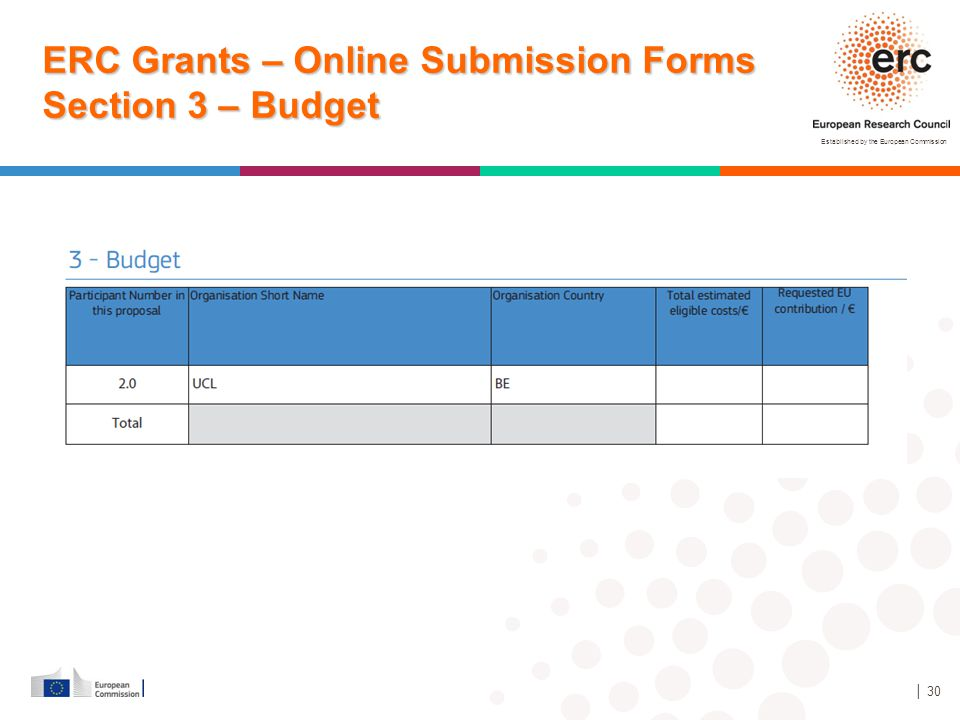 Established by the European Commission │ 30 ERC Grants – Online Submission Forms Section 3 – Budget