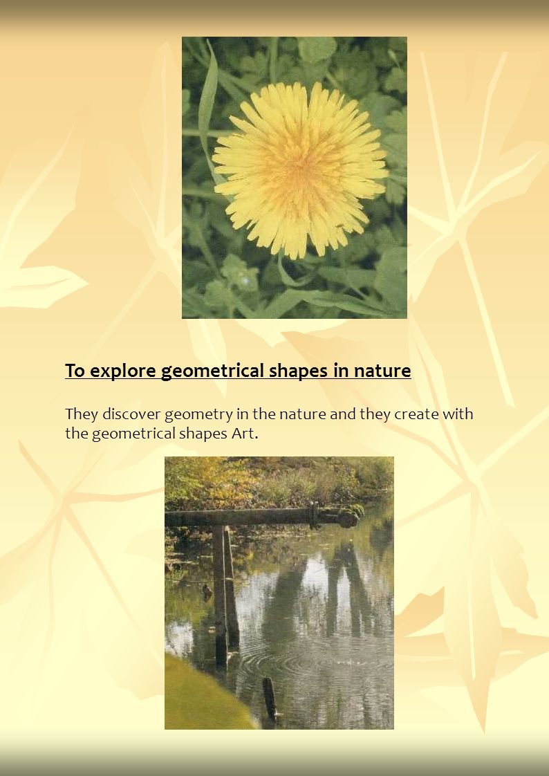 To explore geometrical shapes in nature They discover geometry in the nature and they create with the geometrical shapes Art.