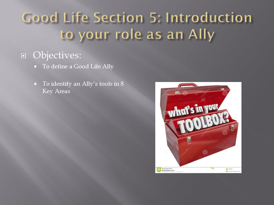  Objectives:  To define a Good Life Ally  To identify an Ally's tools in 8 Key Areas