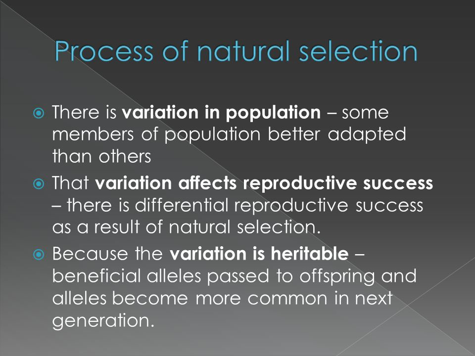  There is variation in population – some members of population better adapted than others  That variation affects reproductive success – there is di