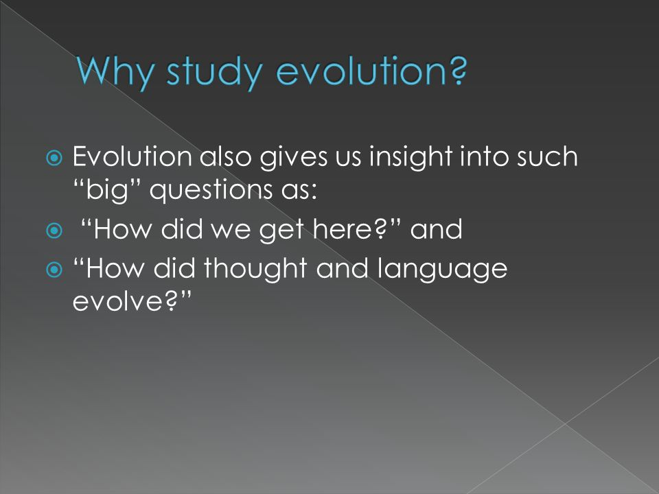 " Evolution also gives us insight into such ""big"" questions as:  ""How did we get here?"" and  ""How did thought and language evolve?"""