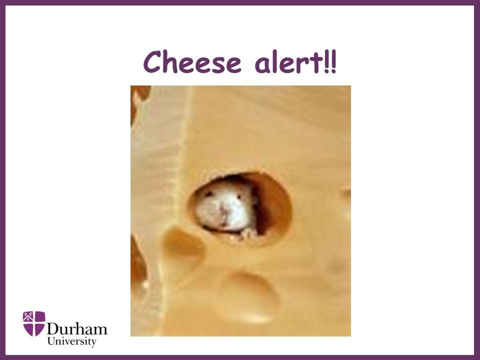 ∂ Cheese alert!!