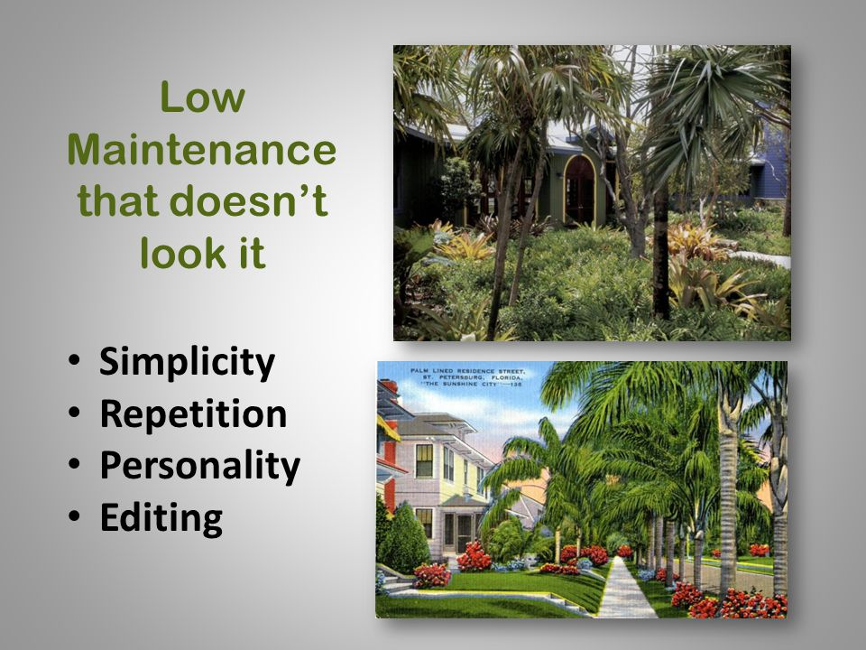 Low Maintenance that doesn't look it Simplicity Repetition Personality Editing