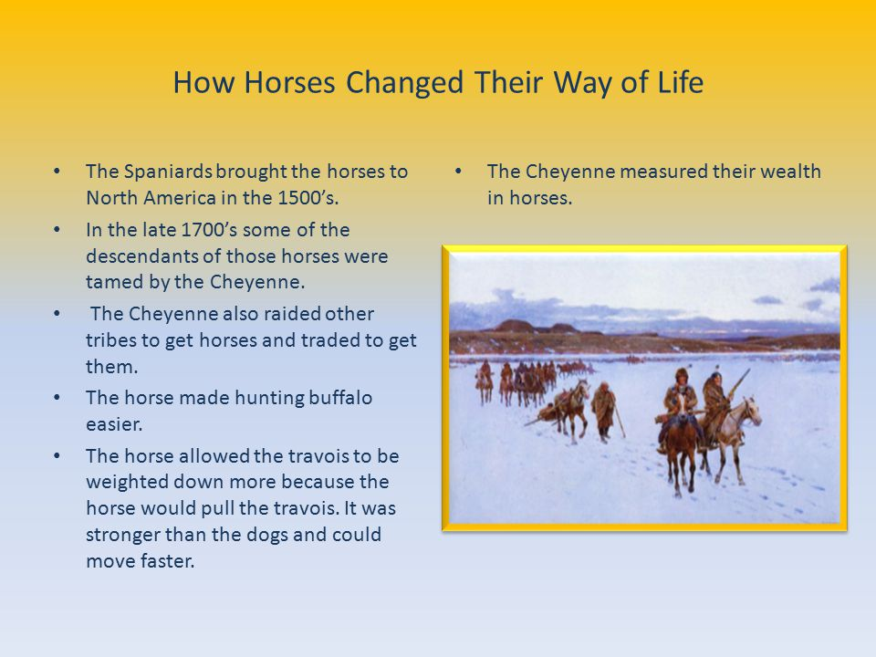How Horses Changed Their Way of Life The Spaniards brought the horses to North America in the 1500's.