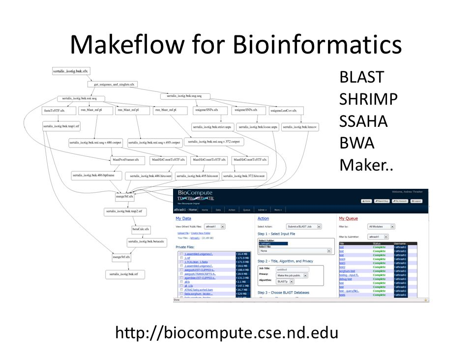 Makeflow for Bioinformatics BLAST SHRIMP SSAHA BWA Maker.. http://biocompute.cse.nd.edu