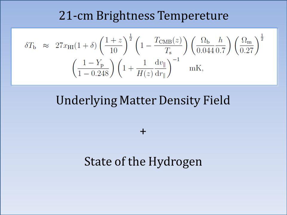 21-cm Brightness Tempereture Underlying Matter Density Field + State of the Hydrogen