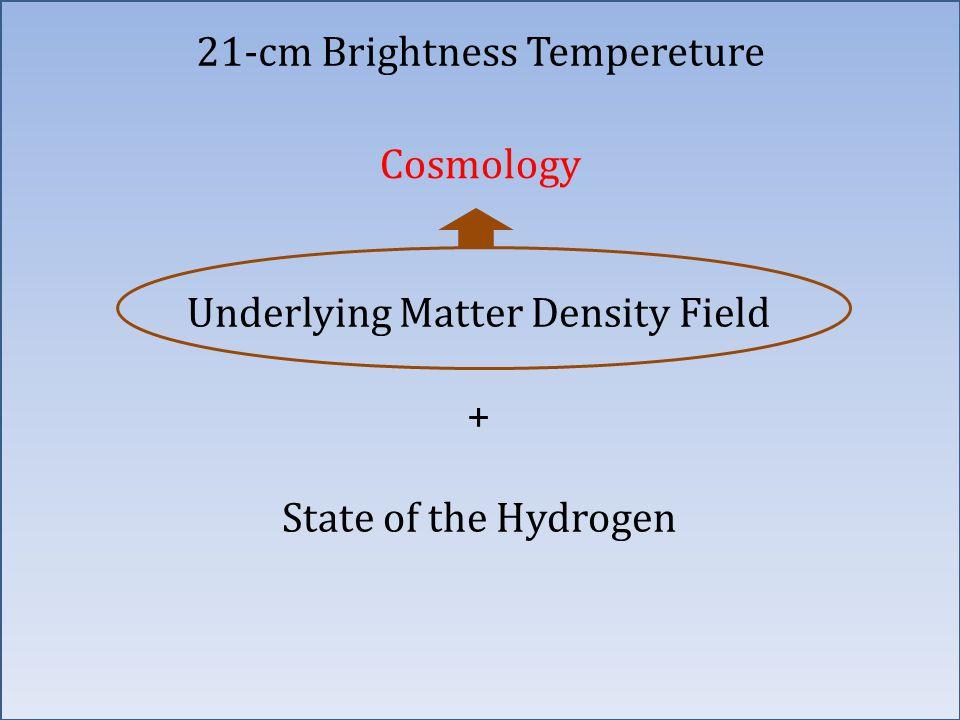 Underlying Matter Density Field + State of the Hydrogen Cosmology 21-cm Brightness Tempereture