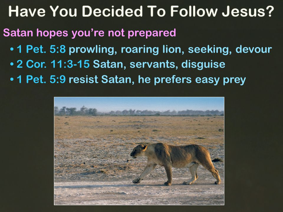 Satan hopes you're not prepared 1 Pet. 5:8 prowling, roaring lion, seeking, devour 1 Pet.