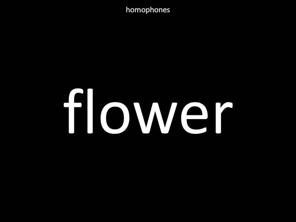 flower homophones