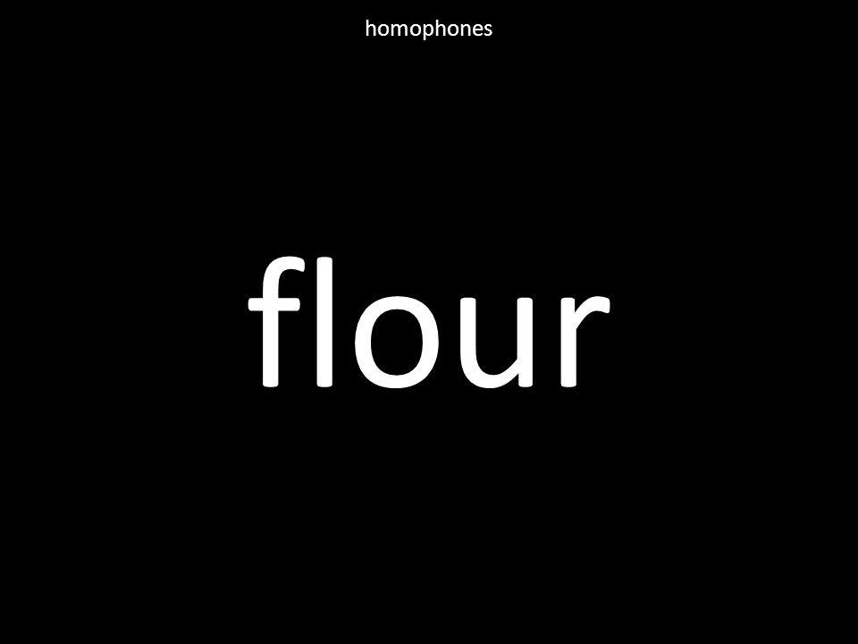 flour homophones