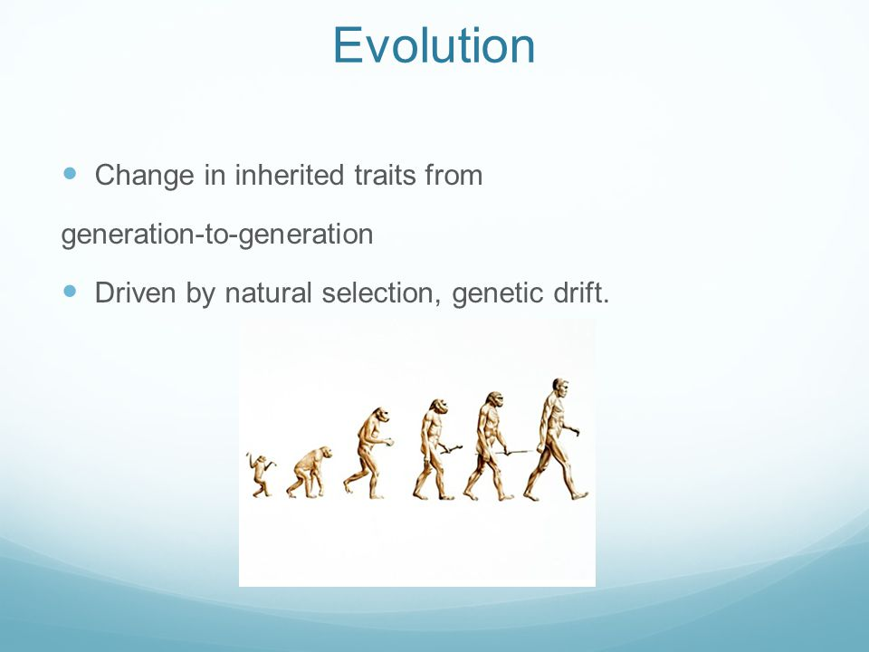 Microevolution Occurrence of small changes in populations.