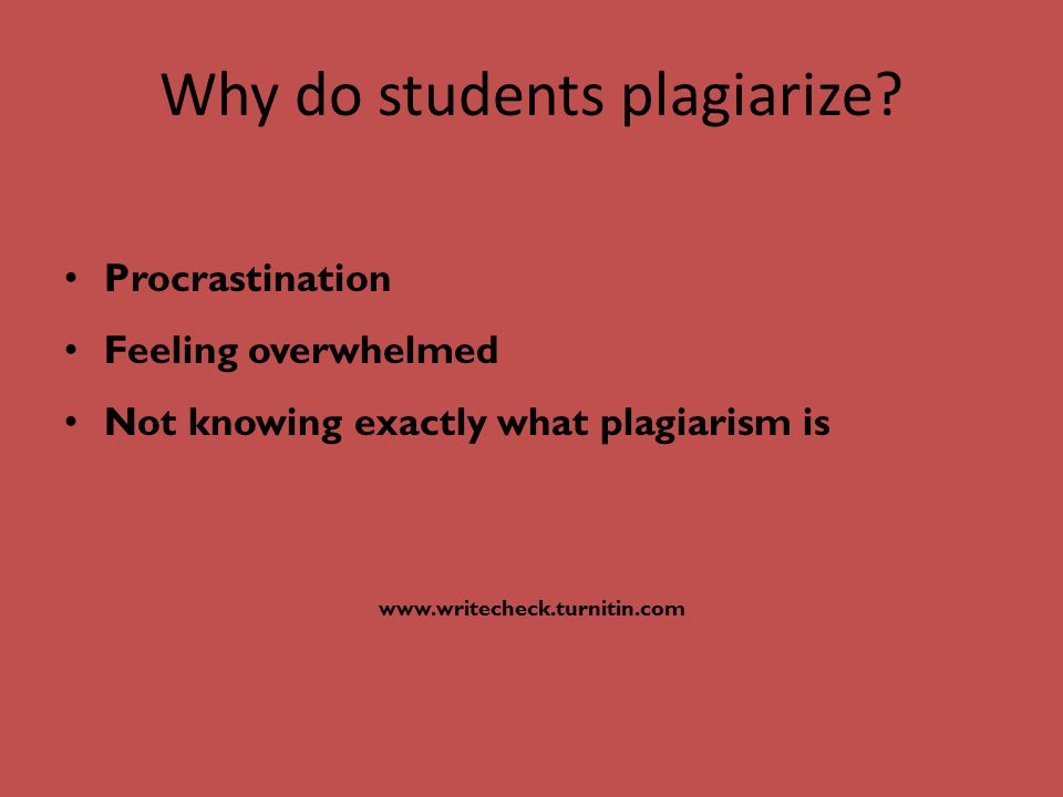 The 3 most common academic misconduct issues are: Plagiarism Cheating on tests/quizzes Lying regarding circumstances