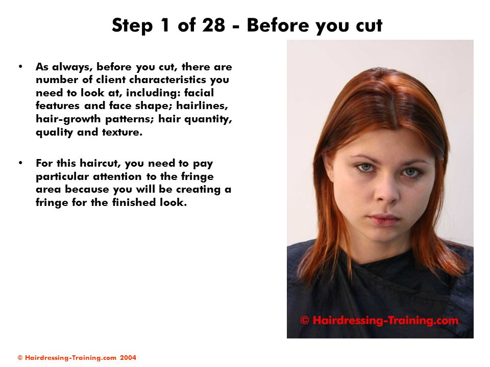 © Hairdressing-Training.com 2004 Step 2 of 28 - Hairlines As part of your client consultation, and before you start your haircut, it is also important to check your client s hairlines.
