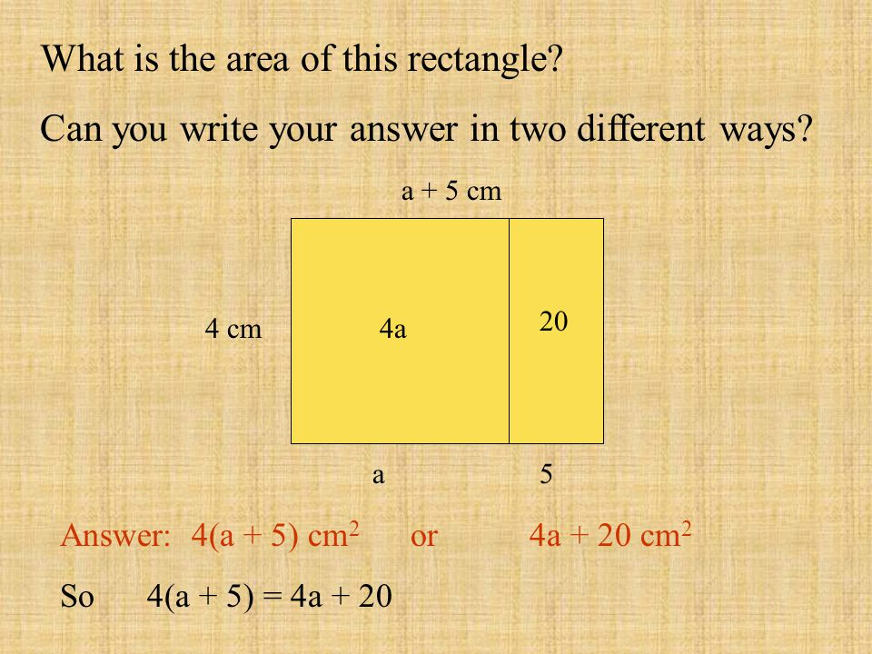 a + 5 cm 4 cm What is the area of this rectangle? Can you write your answer in two different ways? Answer: 4(a + 5) cm 2 or 4a + 20 cm 2 So 4(a + 5) =