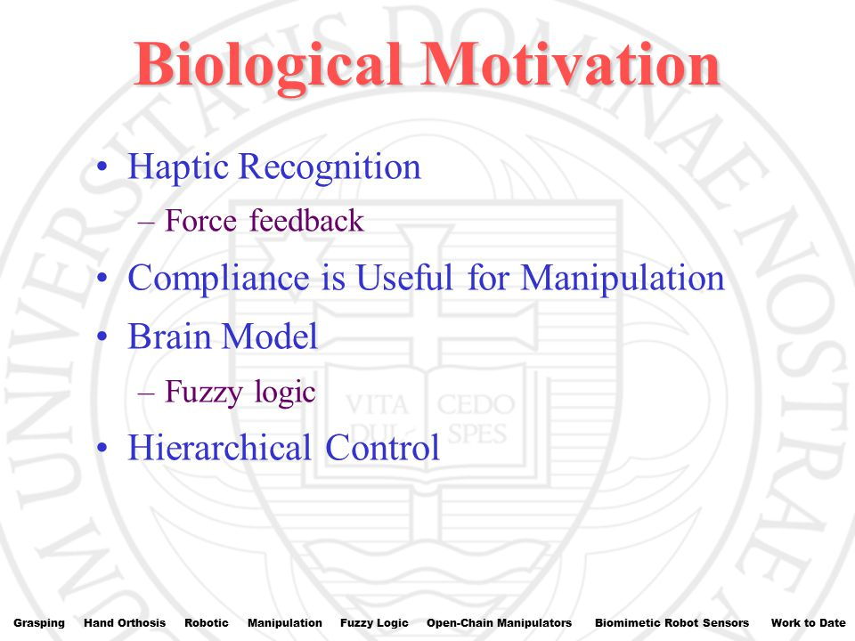 Biological Motivation Haptic Recognition –Force feedback Compliance is Useful for Manipulation Brain Model –Fuzzy logic Hierarchical Control Grasping Hand Orthosis Robotic Manipulation Fuzzy Logic Open-Chain Manipulators Biomimetic Robot Sensors Work to Date