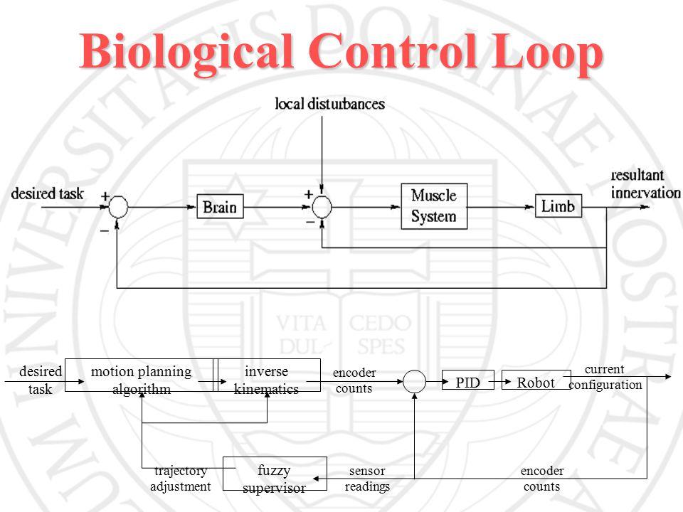 Biological Control Loop desired task motion planning algorithm inverse kinematics encoder counts PIDRobot current configuration encoder counts sensor readings trajectory adjustment fuzzy supervisor
