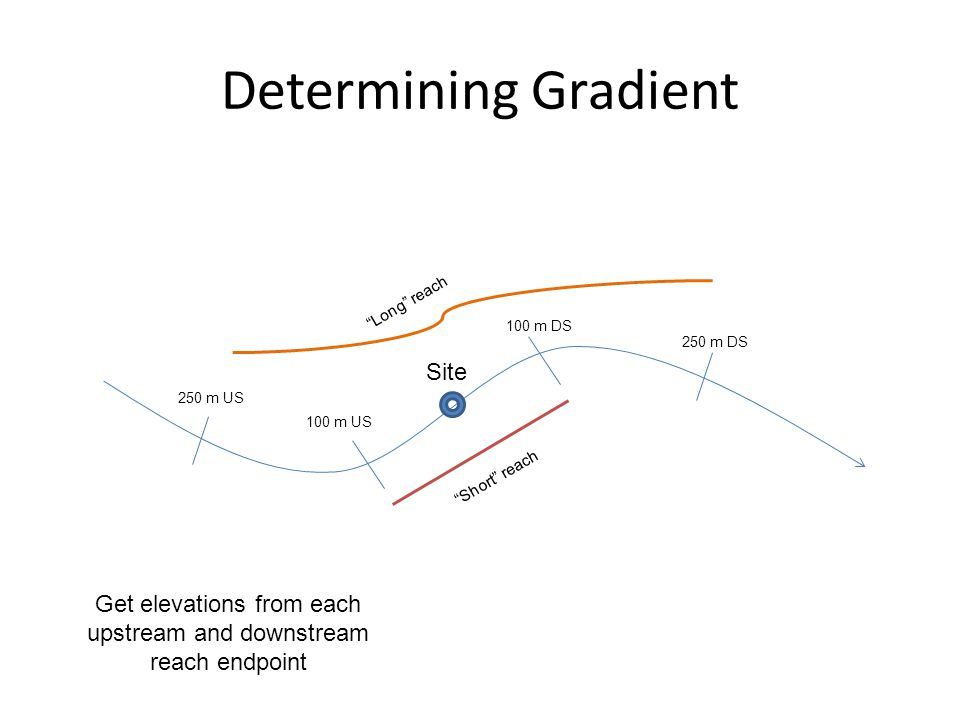 "Determining Gradient Site 100 m DS 100 m US 250 m US 250 m DS ""Short"" reach ""Long"" reach Get elevations from each upstream and downstream reach endpoi"