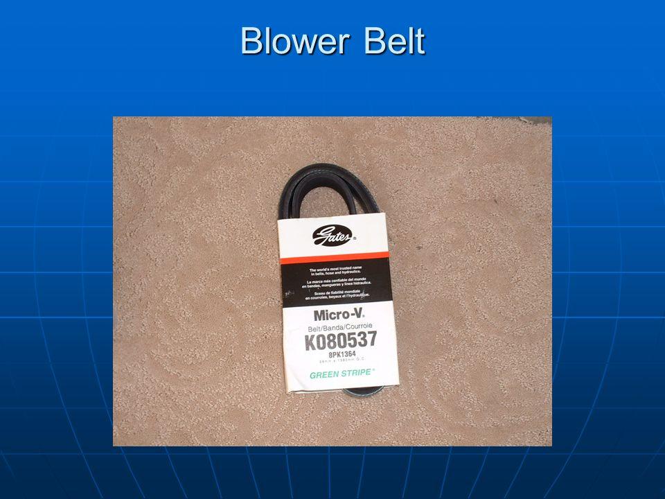 Blower Belt