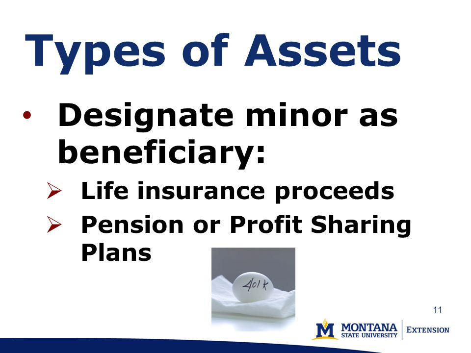 Types of Assets Designate minor as beneficiary:  Life insurance proceeds  Pension or Profit Sharing Plans 11