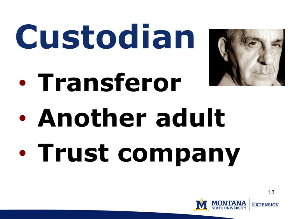 Custodian Transferor Another adult Trust company 13