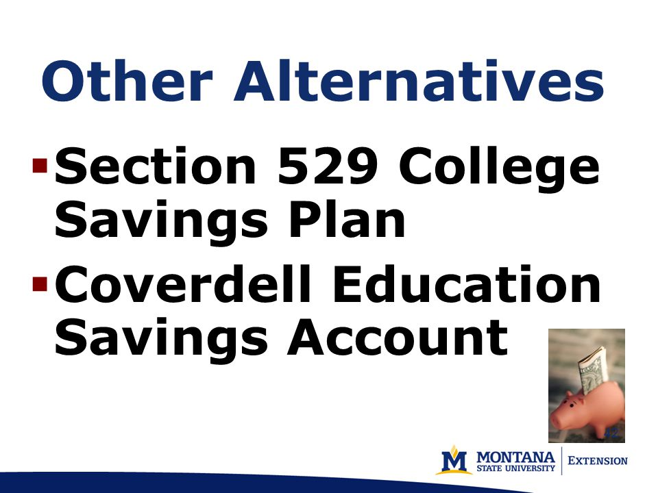 Other Alternatives  Section 529 College Savings Plan  Coverdell Education Savings Account 42