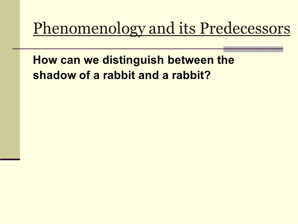 Phenomenology and its Predecessors How can we distinguish between the shadow of a rabbit and a rabbit?