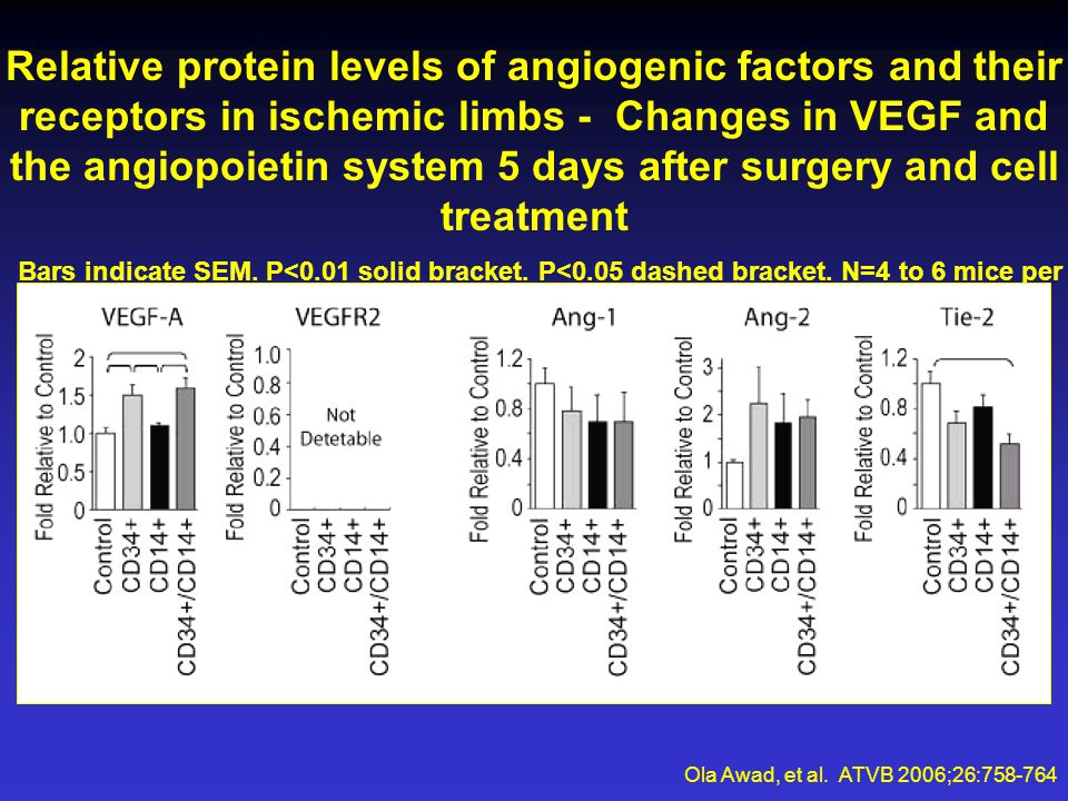 Relative protein levels of angiogenic factors and their receptors in ischemic limbs - Changes in VEGF and the angiopoietin system 5 days after surgery and cell treatment Bars indicate SEM.