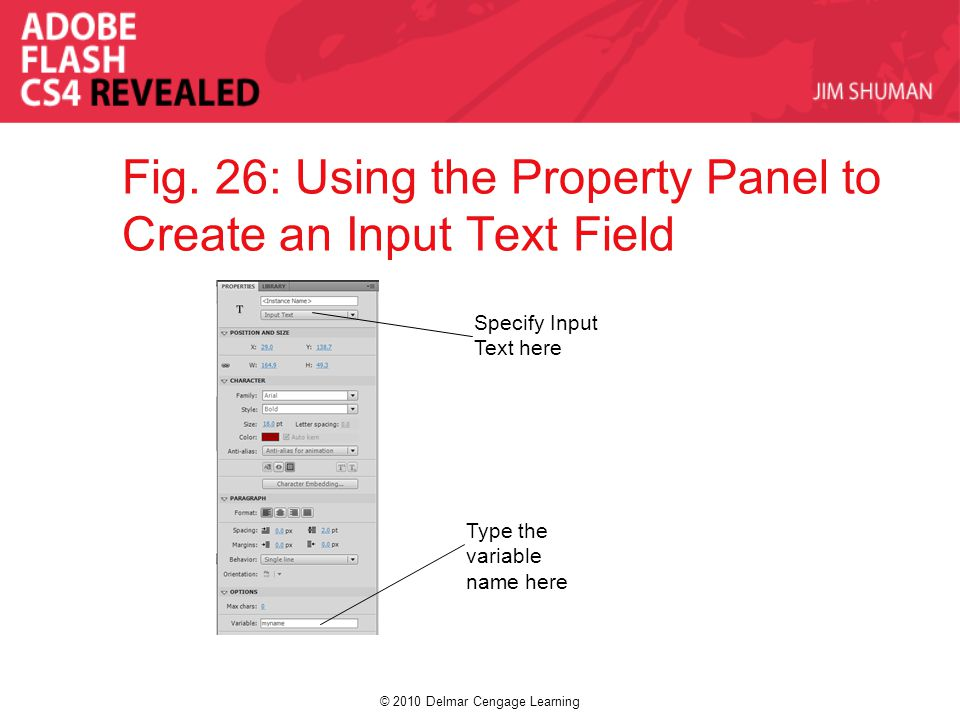 © 2010 Delmar Cengage Learning Fig. 26: Using the Property Panel to Create an Input Text Field Specify Input Text here Type the variable name here