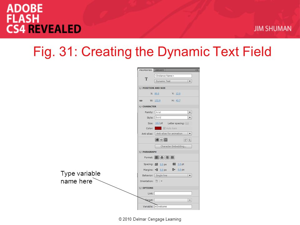 © 2010 Delmar Cengage Learning Fig. 31: Creating the Dynamic Text Field Type variable name here