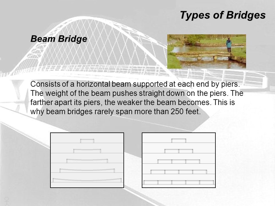 Types of Bridges Beam Bridge Consists of a horizontal beam supported at each end by piers. The weight of the beam pushes straight down on the piers. T