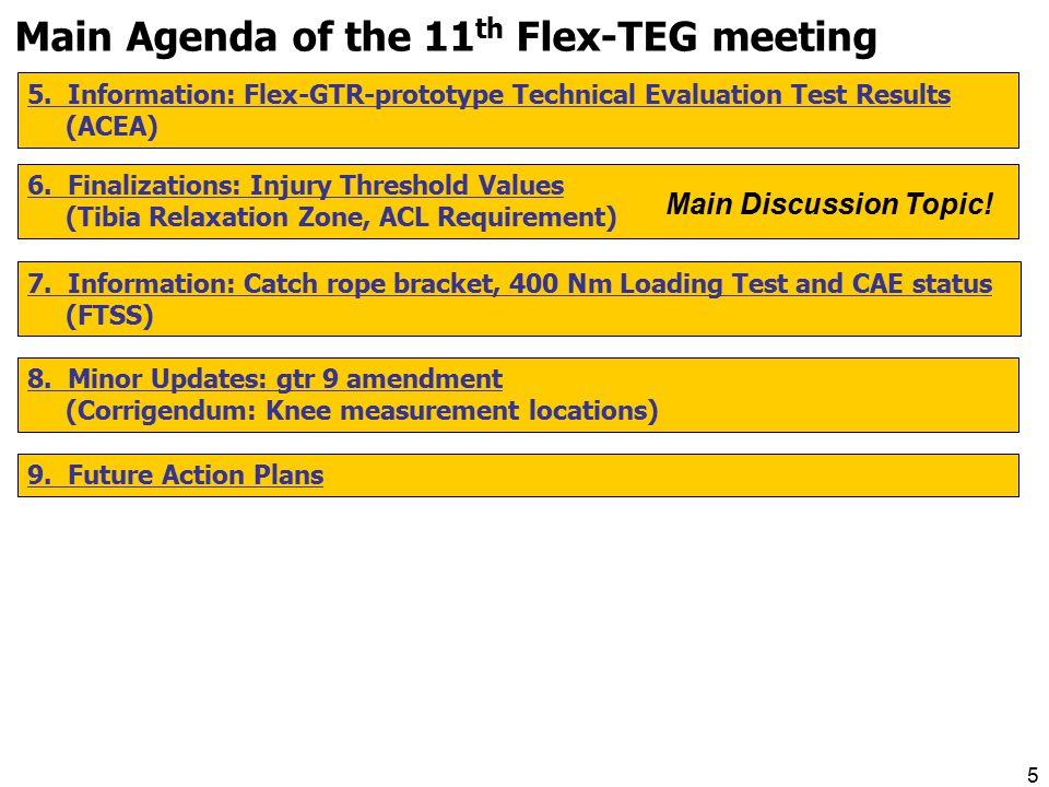 5 Main Agenda of the 11 th Flex-TEG meeting 5.