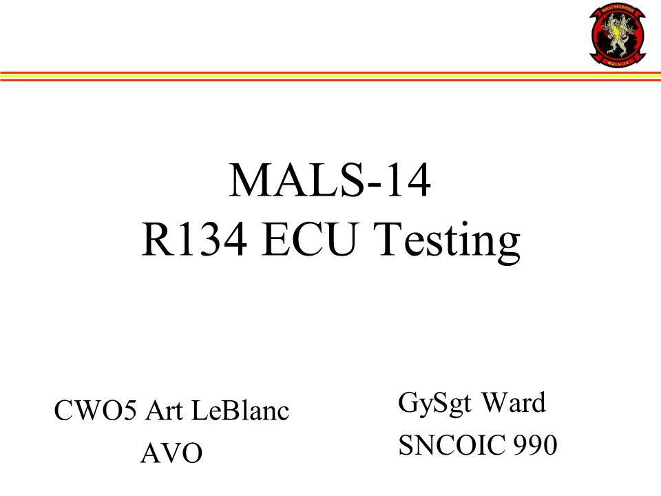 MALS-14 R134 ECU Testing CWO5 Art LeBlanc AVO GySgt Ward SNCOIC 990