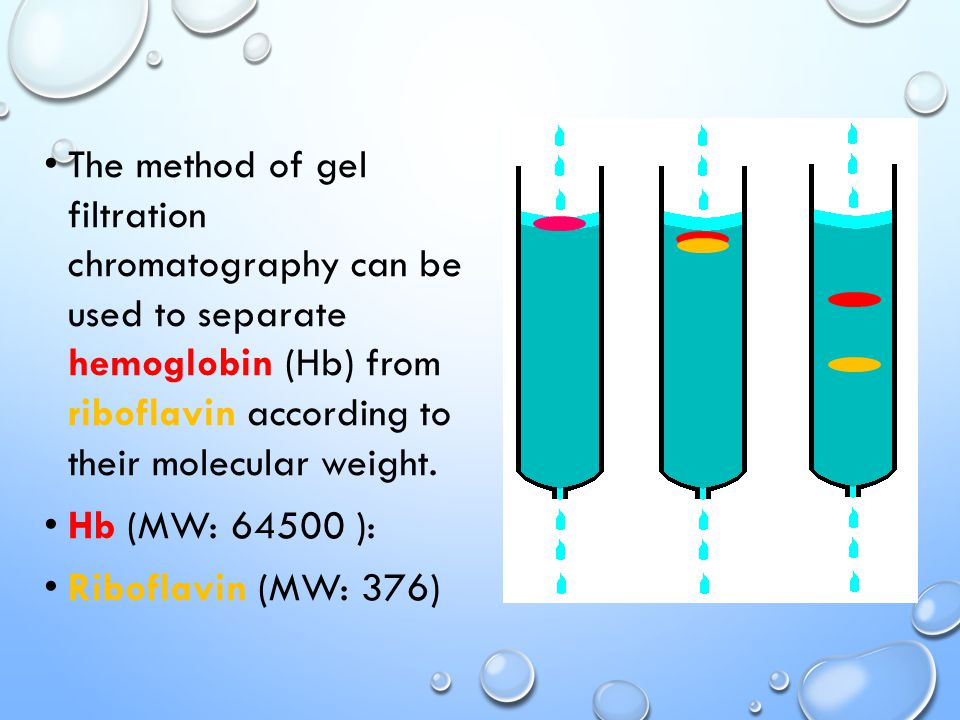 The method of gel filtration chromatography can be used to separate hemoglobin (Hb) from riboflavin according to their molecular weight.