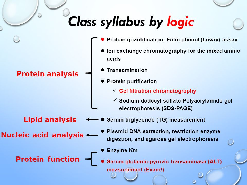 Class syllabus by logic Protein quantification: Folin phenol (Lowry) assay Ion exchange chromatography for the mixed amino acids Transamination Protein purification Gel filtration chromatography Sodium dodecyl sulfate-Polyacrylamide gel electrophoresis (SDS-PAGE) Serum triglyceride (TG) measurement Plasmid DNA extraction, restriction enzyme digestion, and agarose gel electrophoresis Enzyme Km Serum glutamic-pyruvic transaminase (ALT) measurement (Exam!) Protein analysis Nucleic acid analysis Protein function Lipid analysis