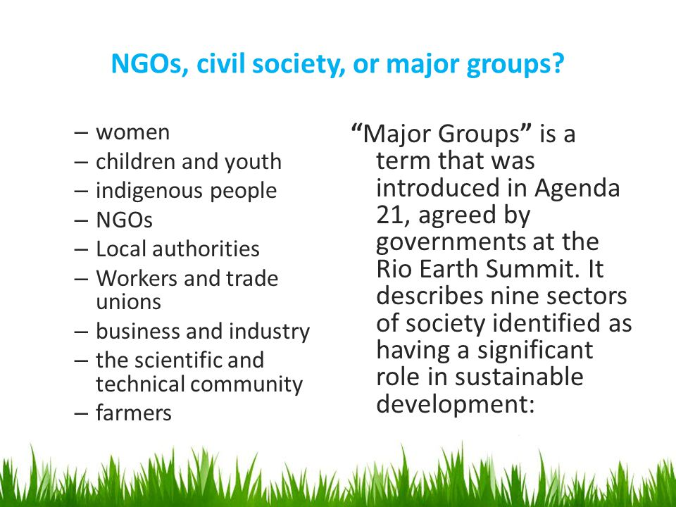 NGOs, civil society, or major groups.