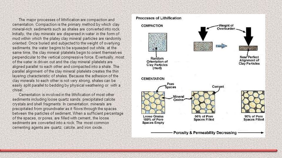 The major processes of lithification are compaction and cementation. Compaction is the primary method by which clay mineral-rich sediments such as sha