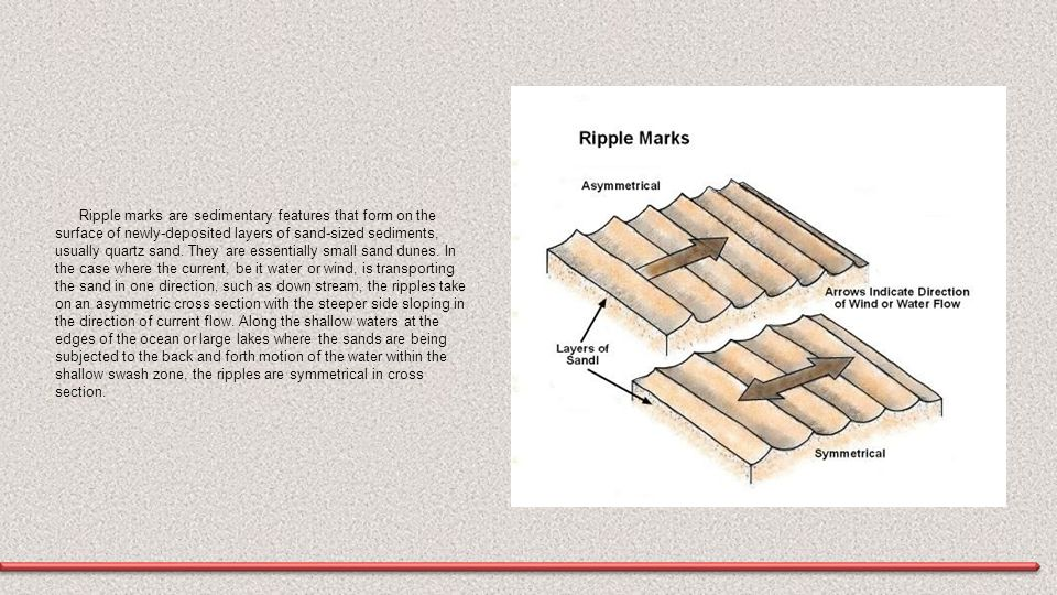 Ripple marks are sedimentary features that form on the surface of newly-deposited layers of sand-sized sediments, usually quartz sand. They are essent