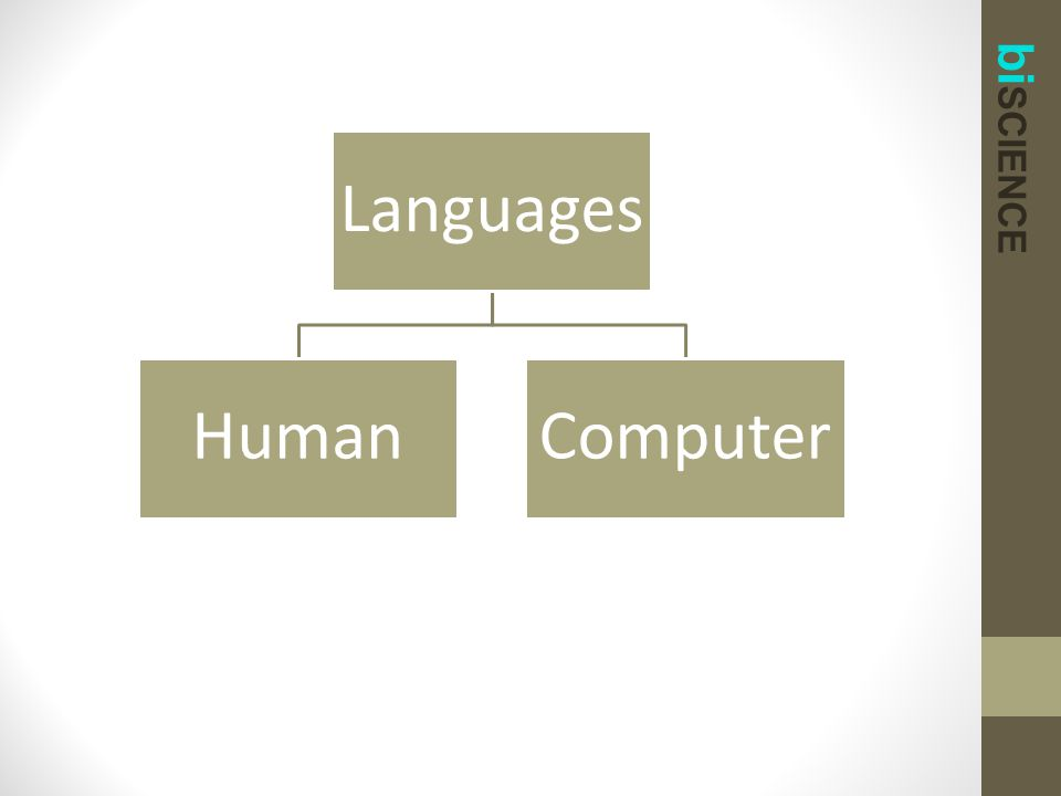 Languages HumanComputer