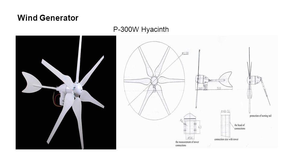 Wind Generator P-300W Hyacinth