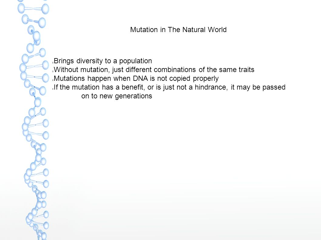 Mutation in The Natural World Brings diversity to a population Without mutation, just different combinations of the same traits Mutations happen when