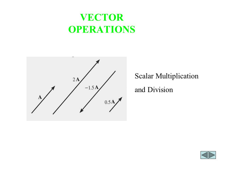 VECTOR OPERATIONS Scalar Multiplication and Division
