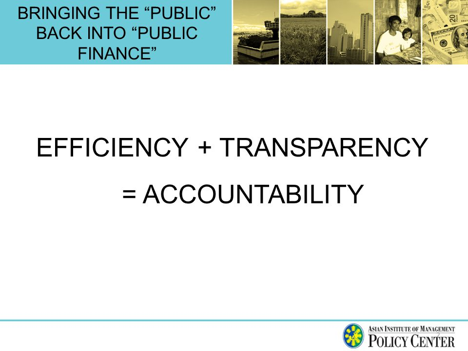 BRINGING THE PUBLIC BACK INTO PUBLIC FINANCE 2 EFFICIENCY + TRANSPARENCY = ACCOUNTABILITY