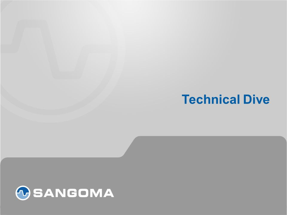 Technical Dive