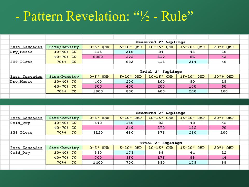 - Pattern Revelation: ½ - Rule