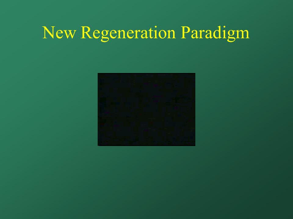 New Regeneration Paradigm