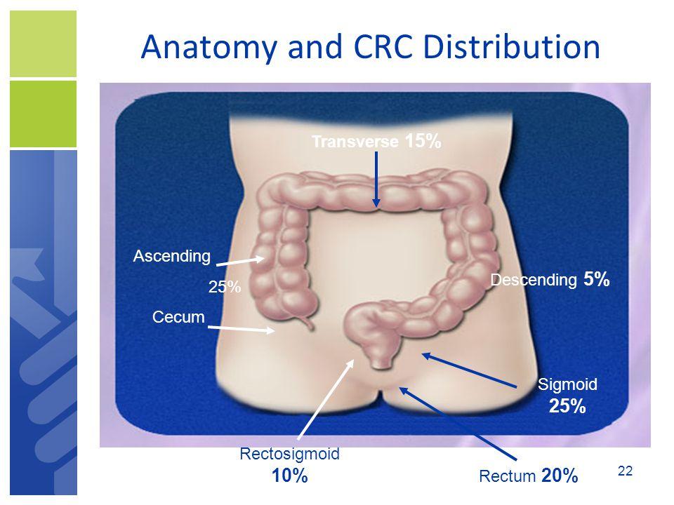 Anatomy and CRC Distribution Transverse 15% Descending 5% Ascending 25% Cecum Rectosigmoid 10% Sigmoid 25% Rectum 20% 22